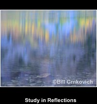 Study in Reflections